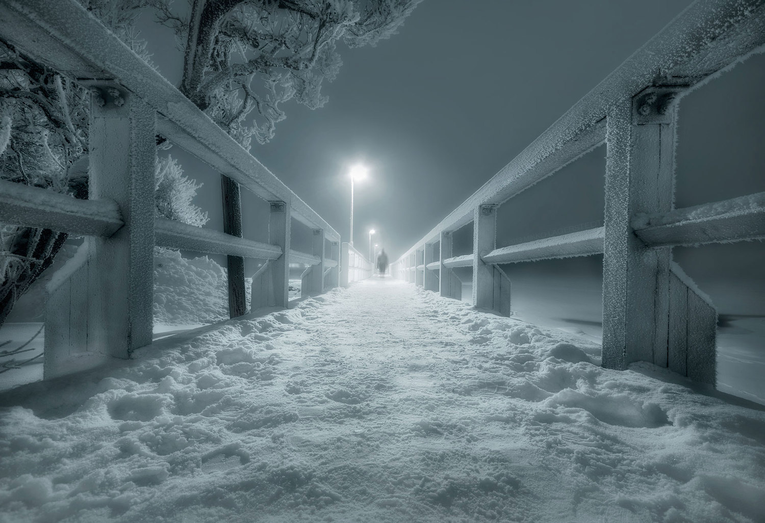 mikkolagerstedt-photography-0
