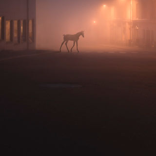 mikkolagerstedt-photography-thumb