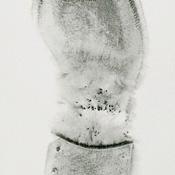pati-oldskull-thumb