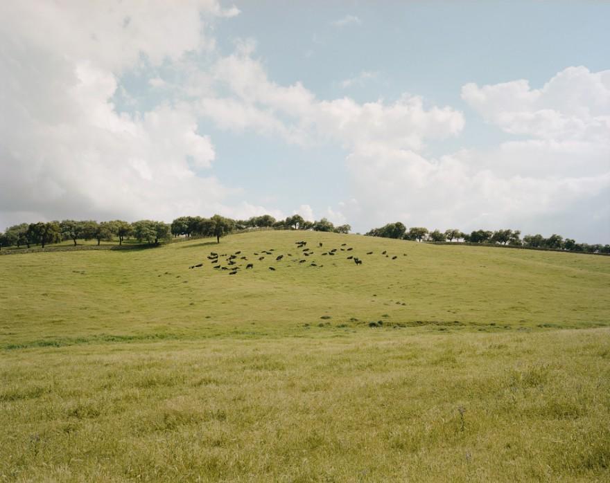CountryFictions-fotografia-oldskull-02