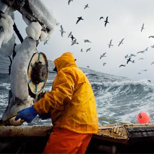 FishWorks-fotografia-oldskull-thumb