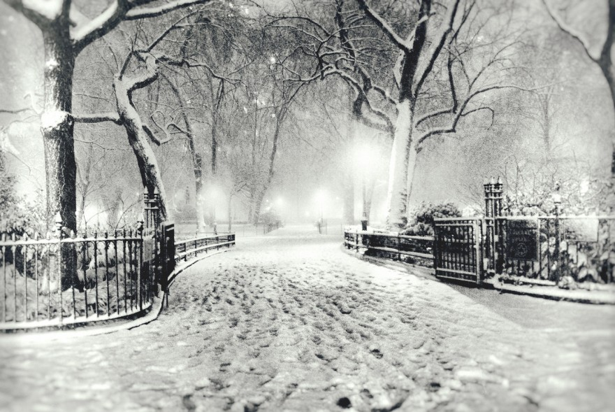 """New York City Winter - Snow - Night in Madison Square Park"""