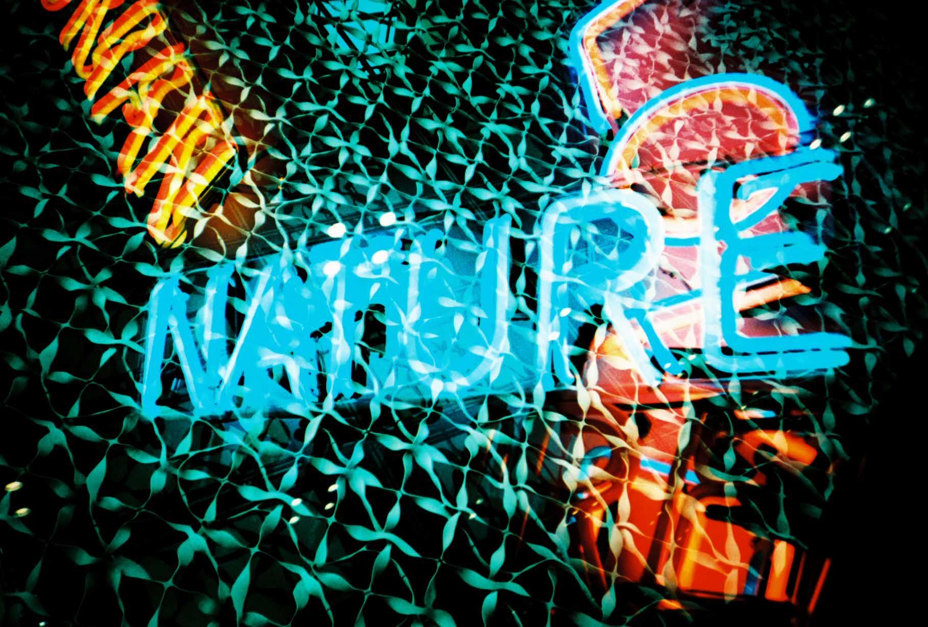 FilmSwap-fotografia-oldskull-06