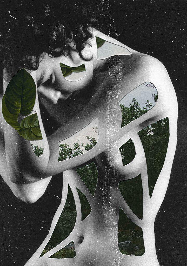 nature collages rocio montoya 3