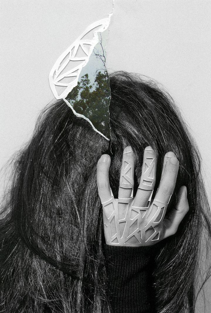 nature collages rocio montoya 9