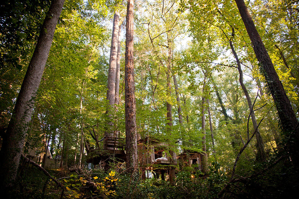 tree house architecture oldskull 8