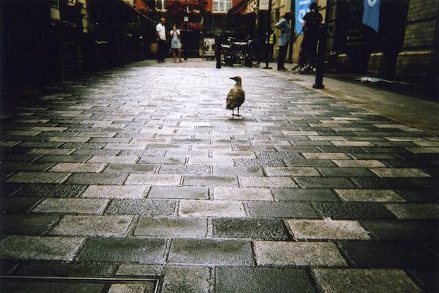HomelessLondon-fotografia-oldskull-13