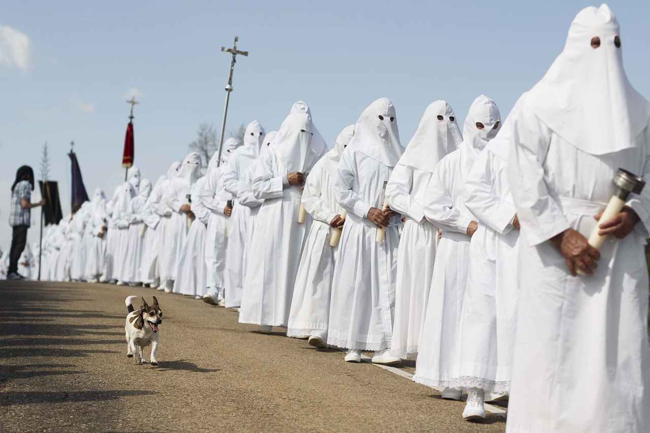 A dog runs as he follows the penitents taking part in the Good Friday 'Del Santo Entierro' procession during Holy Week in the small village of Bercianos de Aliste, northern Spain, March 18, 2014. The clothes worn by the Berciano's penitents will be used as their own shrouds when they die, according to the tradition. Hundreds of processions take place throughout Spain during the Easter Holy Week.(AP Photo/Daniel Ochoa de Olza)