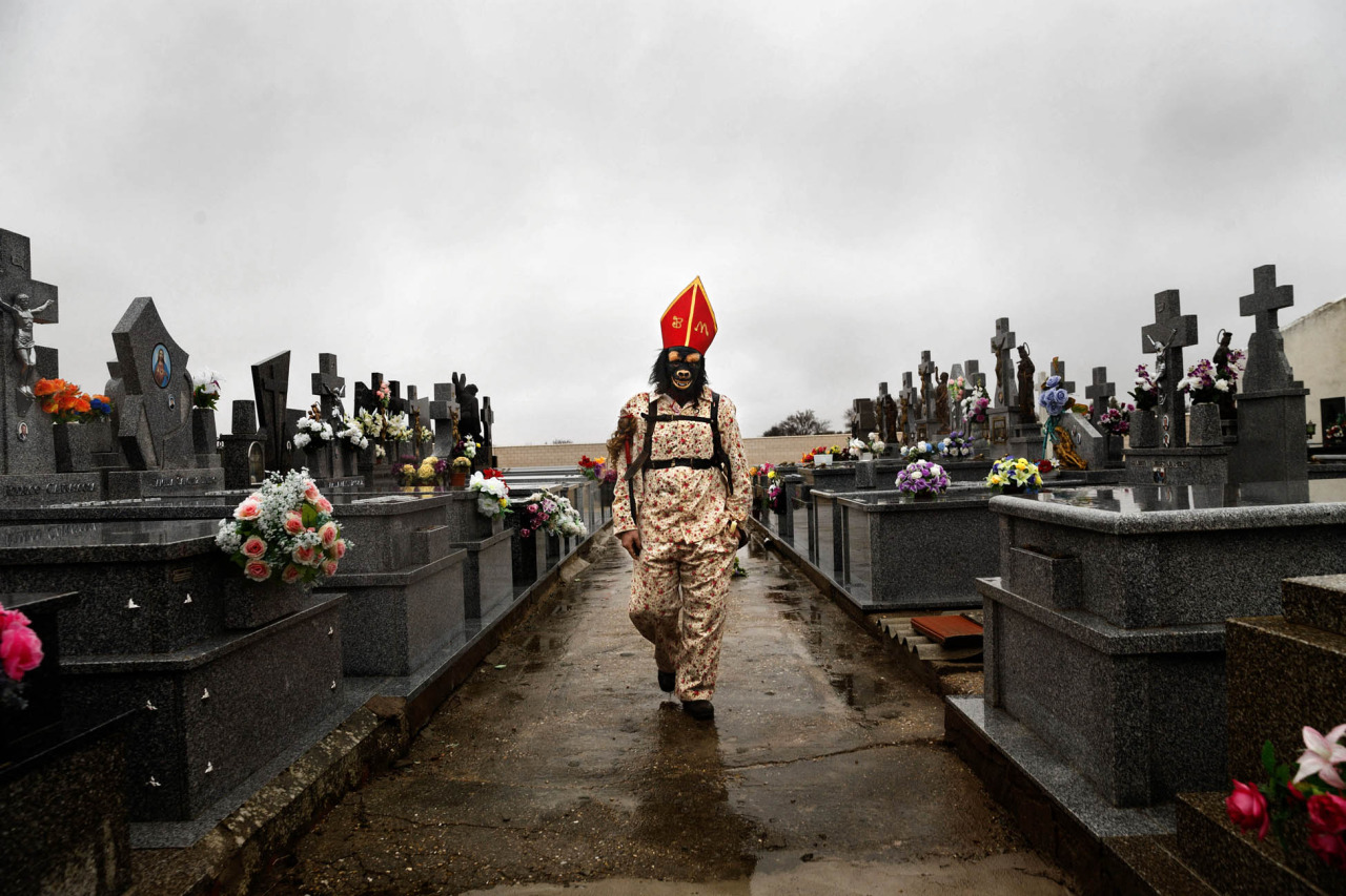 "In this Feb. 2, 2015 picture, a member of the Endiablada brotherhood walk trough the cemetery after paying respect to their deceased fellow believers and relatives during the 'Endiablada' traditional festival in Almonacid Del Marquesado, Spain. During the Endiablada, or 'The Brotherhood of the Devils' believers dressed in colorful costumes, wearing a red mitre and big copper cowbells hanging tied to their waists make lot of noise as they walk, dance or jump around streets if the tiny village, and during its procession, in front of the a sculpture depicting the Virgin or the Saint. In the ""Endiablada"", is a tradition that has survived through the centuries in honor of the Candelaria's Virgin and San Blas. Candelaria, refers to the Jewish protocol, in which the Virgin Mary had to present her new baby, Jesus, to the temple, forty days after his birth. In the Catholic teachings, it is said that this action caused the Virgin Mary great anxiety and shame because of the public knowledge of the unusual circumstances of Jesus's birth. La Endiablada brotherhood with their noisy bells are said to be trying to divert the public's attention so that the Virgin Mary could fulfill her obligation and avoid suffering such embarrassment and shame. The connection of the dancing 'diablos' to San Blas has another explanation, according to a local legend shepherds found an image of San Blas, a miraculous event took place and they understood to be a sign that the saint was meant to stay in Almonacid. As a sign of their joy the shepherds rang the bells of their cattle so giving La Endiablada their famous cowbells. (AP Photo/Daniel Ochoa de Olza)"