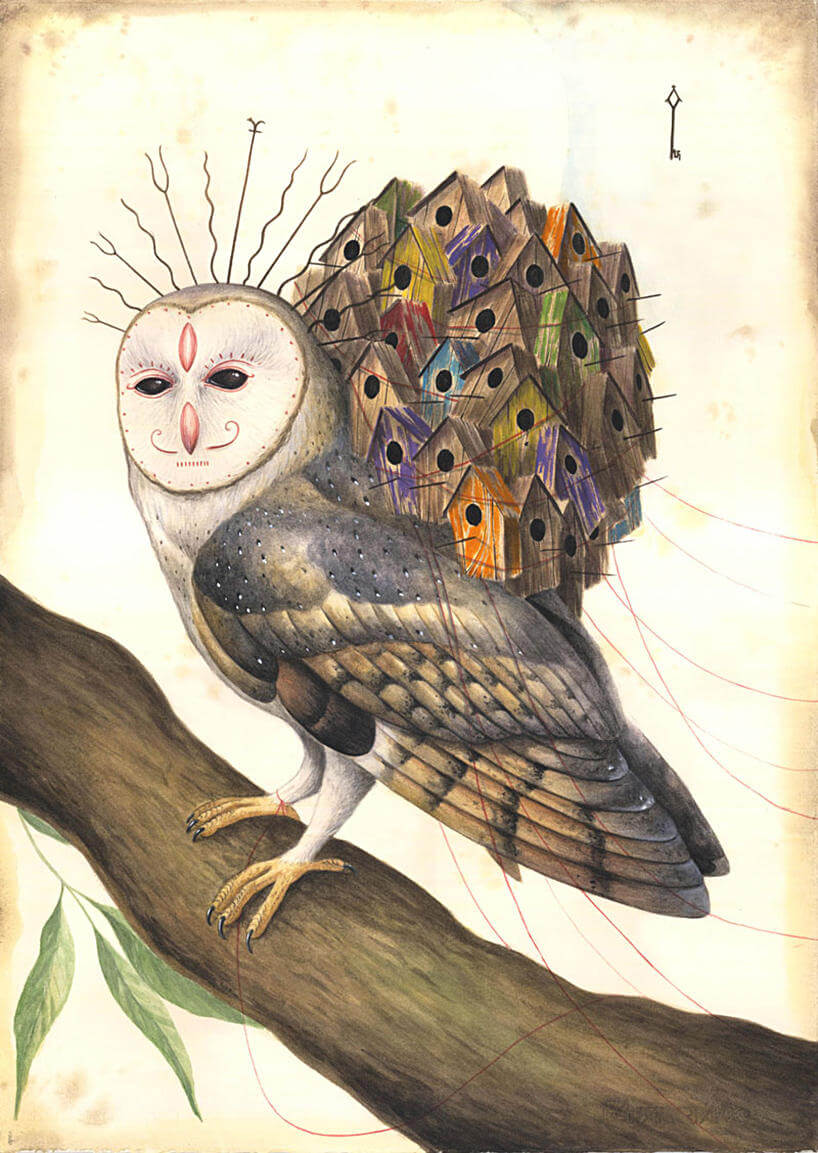el gato chimea illustration 7