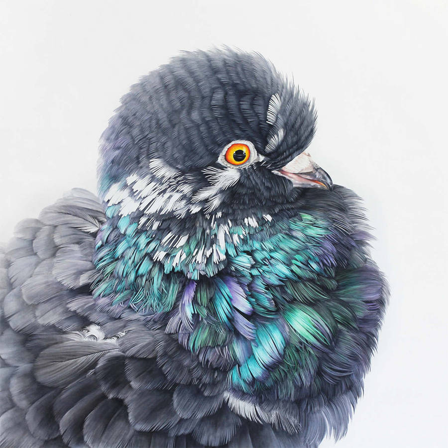 Adele Renault Paints Incredibly Realistic Pigeon (5)
