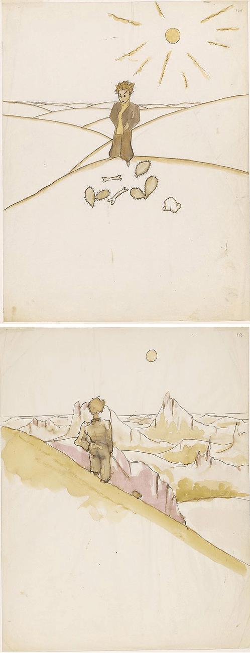 el principito dibujos ilustraciones 4