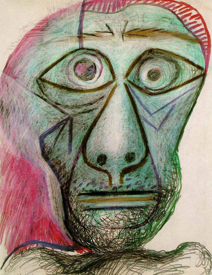 Picasso Self Portrait Evolution From Age 15 To Age 90  (12)