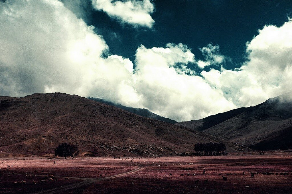 oldskull-foto-zakariawakrim-06