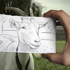 Ben Heine
