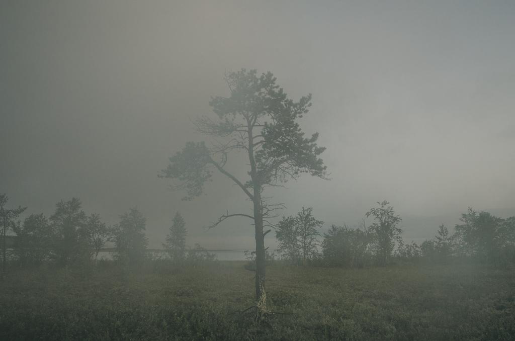 kopatz-foto-oldskull-12