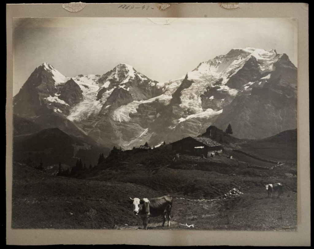 national-geographic-pictures-oldskull-9