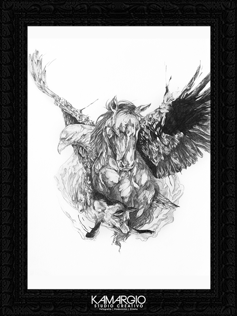 Ivan kamargio illustration 9