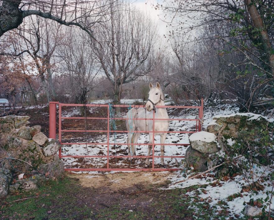 CountryFictions-fotografia-oldskull-19