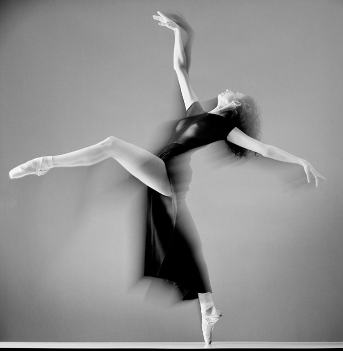Howard-Schatz5