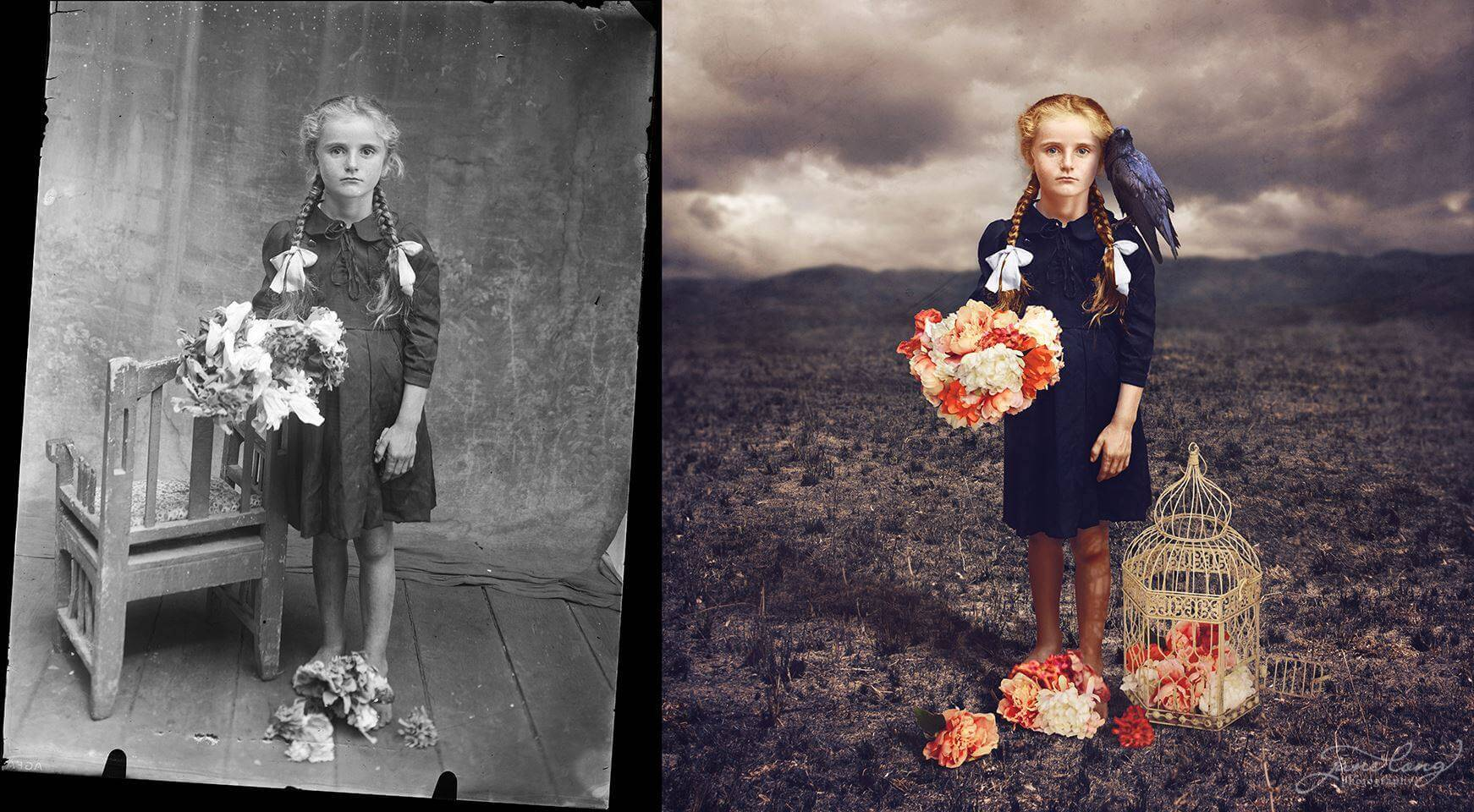 Jane Long Photography color oldskull 8
