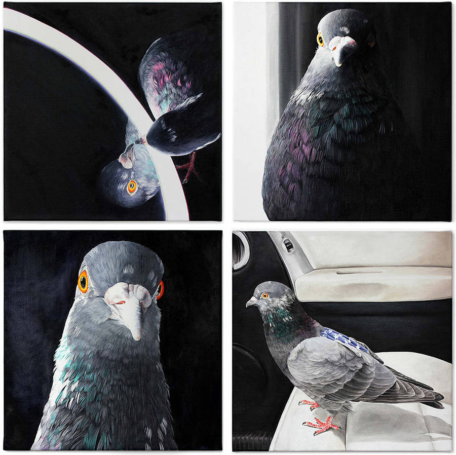 Adele Renault Paints Incredibly Realistic Pigeon (6)