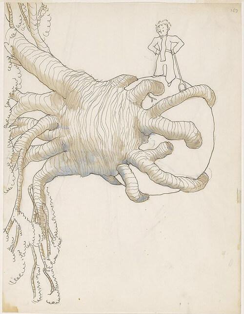 el principito dibujos ilustraciones 8