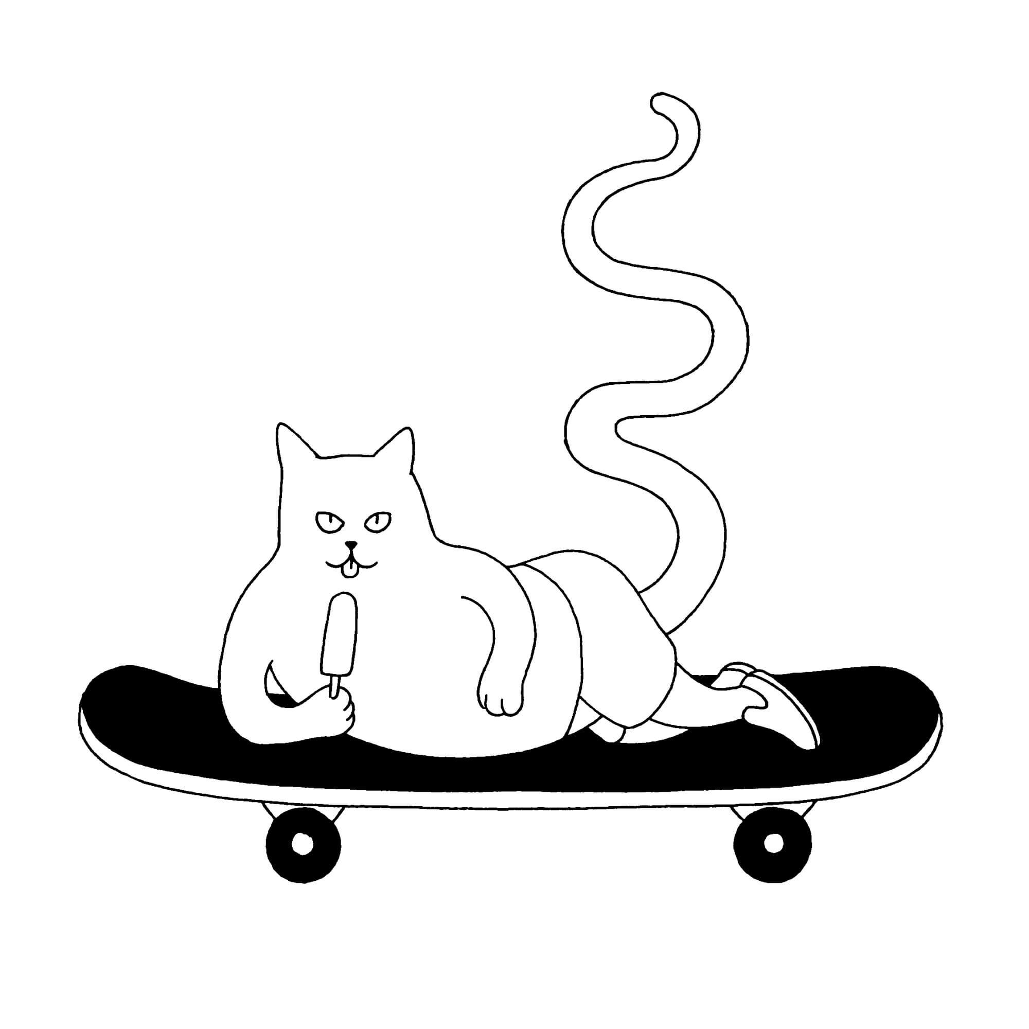 Vans Cat_M+M